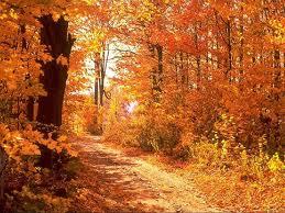 Sonbahar Ile Ilgili Akrostiş şiir Sonbahar Akrostiş